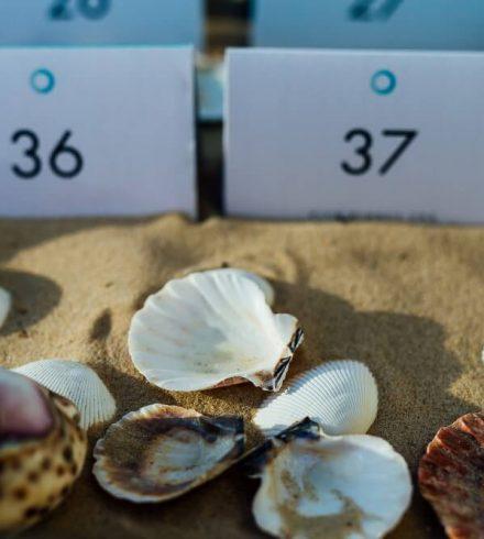 מיתוג בהשראת הים 5.91